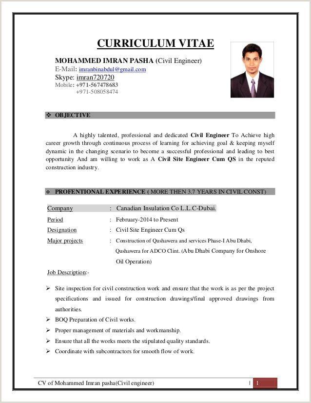 Standard Cv Format Pdf In India Cv Of Mohammed Imran Pasha Civil Engineer - my templates