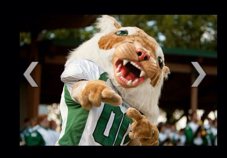 Bearcat mascot northwest missouri state university