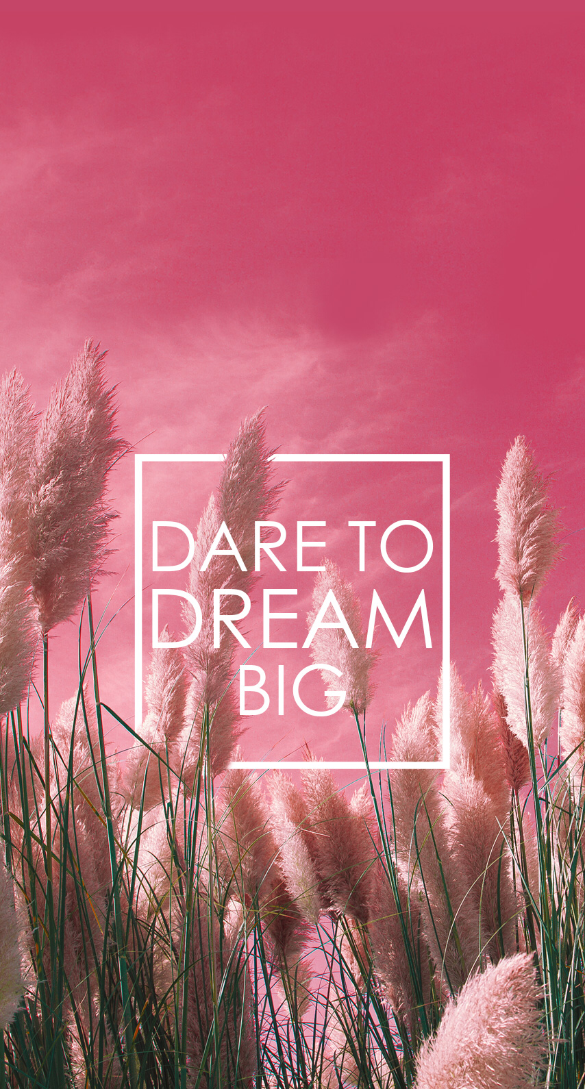 dare to dream big // wallpaper, backgrounds | wallpapers | pinterest