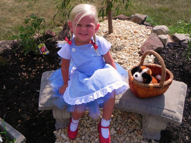 DOROTHY costume/Wizard of Oz Inspired Costume/Dorothy Tutu Costume ...