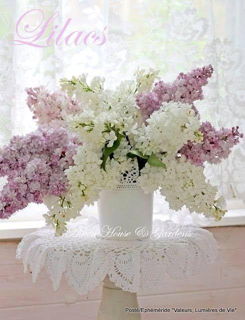 fiori e viori lilla