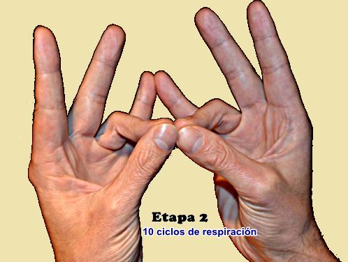 Masaje de próstata gestos mudra