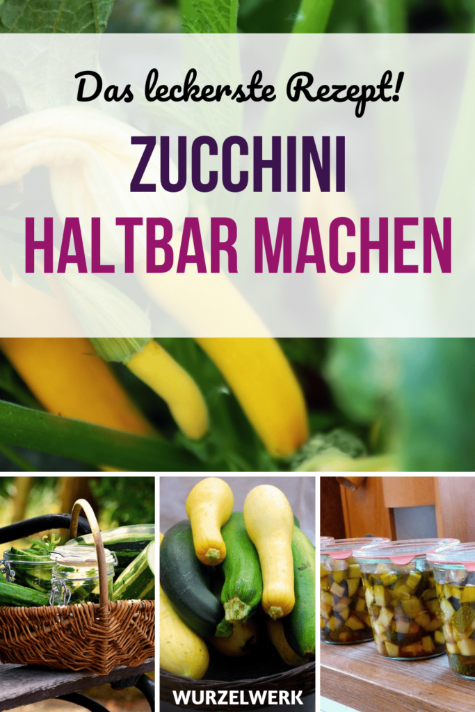 Photo of Preserving zucchini – preserving zucchini delicacy! – root system