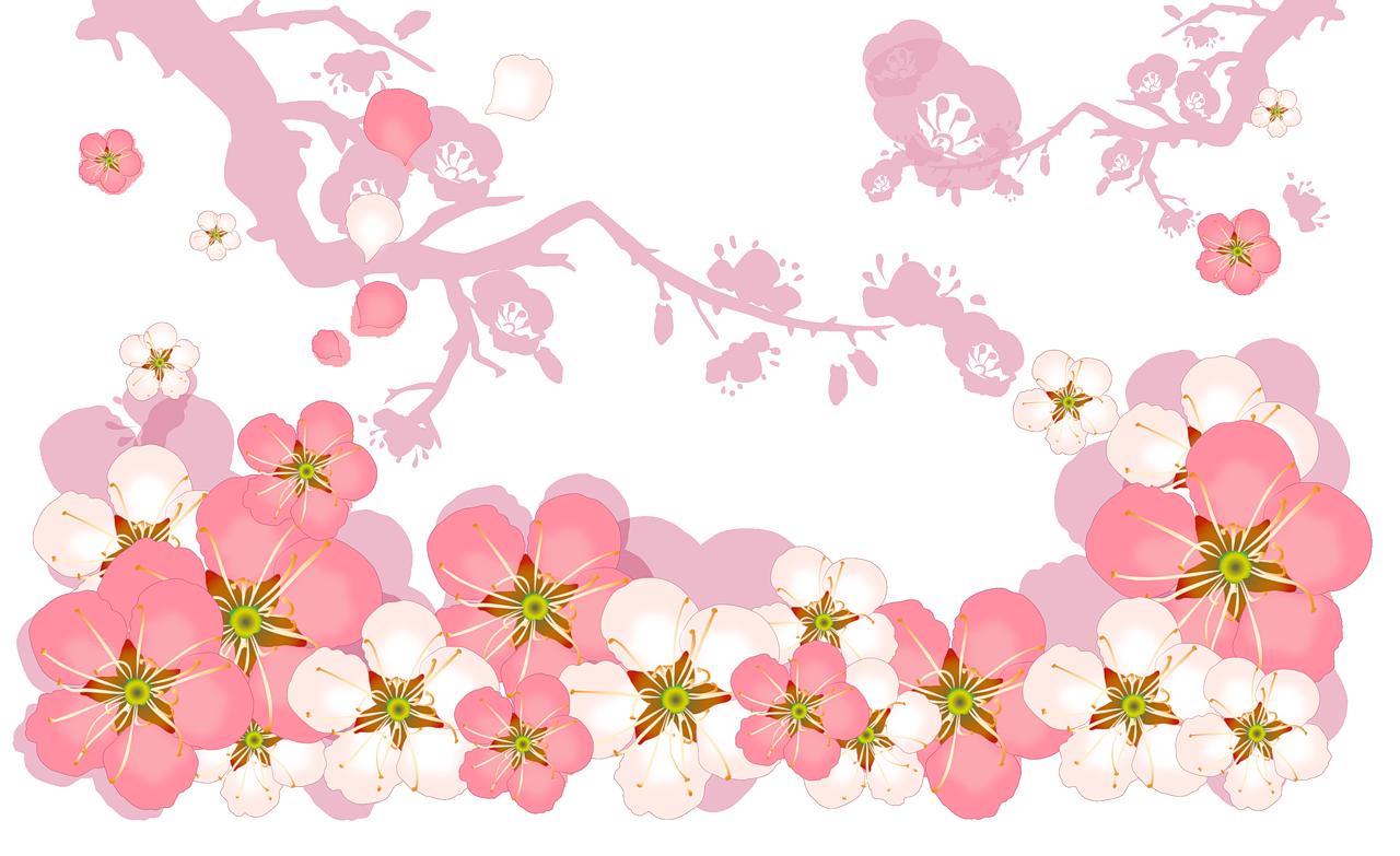 цветы картинки на прозрачном фоне