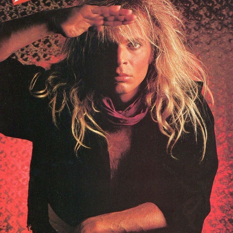 David lee roth music pinterest david lee roth and van halen van halen david lee roth publicscrutiny Image collections