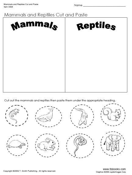 day 32 mammal and reptiles cut and paste worksheet unit ideas mammals cut paste. Black Bedroom Furniture Sets. Home Design Ideas