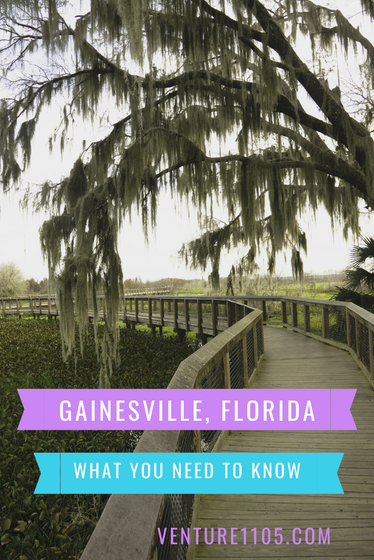 What You Need To Know About Traveling To Gainesville Florida Venture1105 Gainesville Florida Gainesville Florida Travel