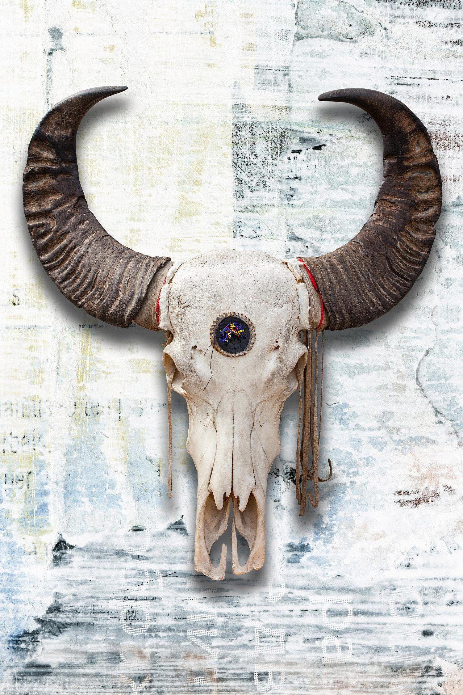 Einfache Dekoration Und Mobel Mammoth Collection #23: Premium Collection By Home Affaire Unikat Bunt, (B/H): 75/100cm, »Büffel«  Jetzt Bestellen Unter: Https://moebel.ladendirekt.de/dekoration/bilder-und-rahmen/  ...