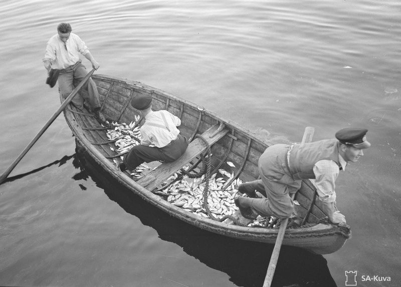 Helsingin pommituksissa iso osa pommeista putosi mereen. Kuvassa kaupunkilaiset keräävät pommitusten seurauksena kuolleita kaloja. SA-kuva.