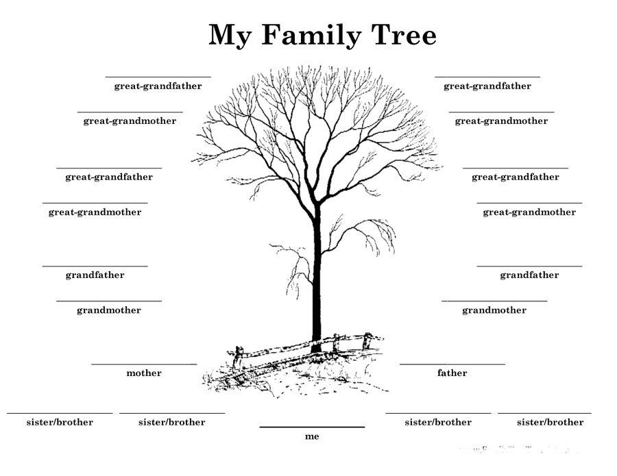 Download Family Tree Template   Family Tree Chart