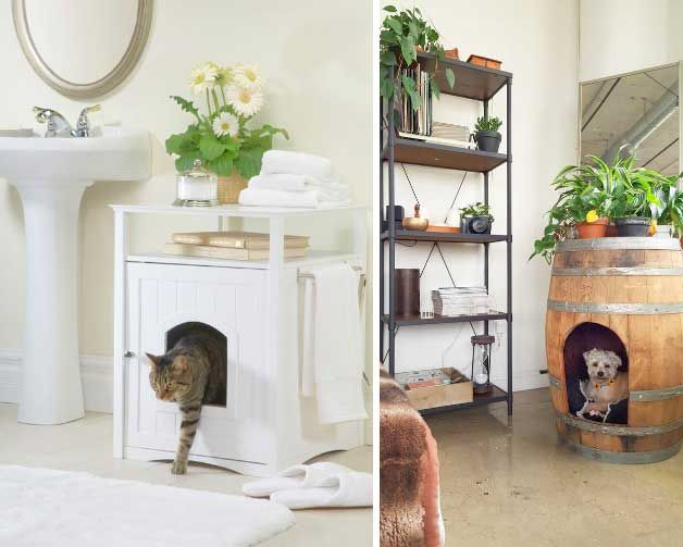 Pets In Small Apartments 10 Creative Hacks For Fido S