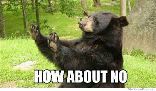 How About No Bear Meme Teacher Humor Bear Meme Pharmacy Humor