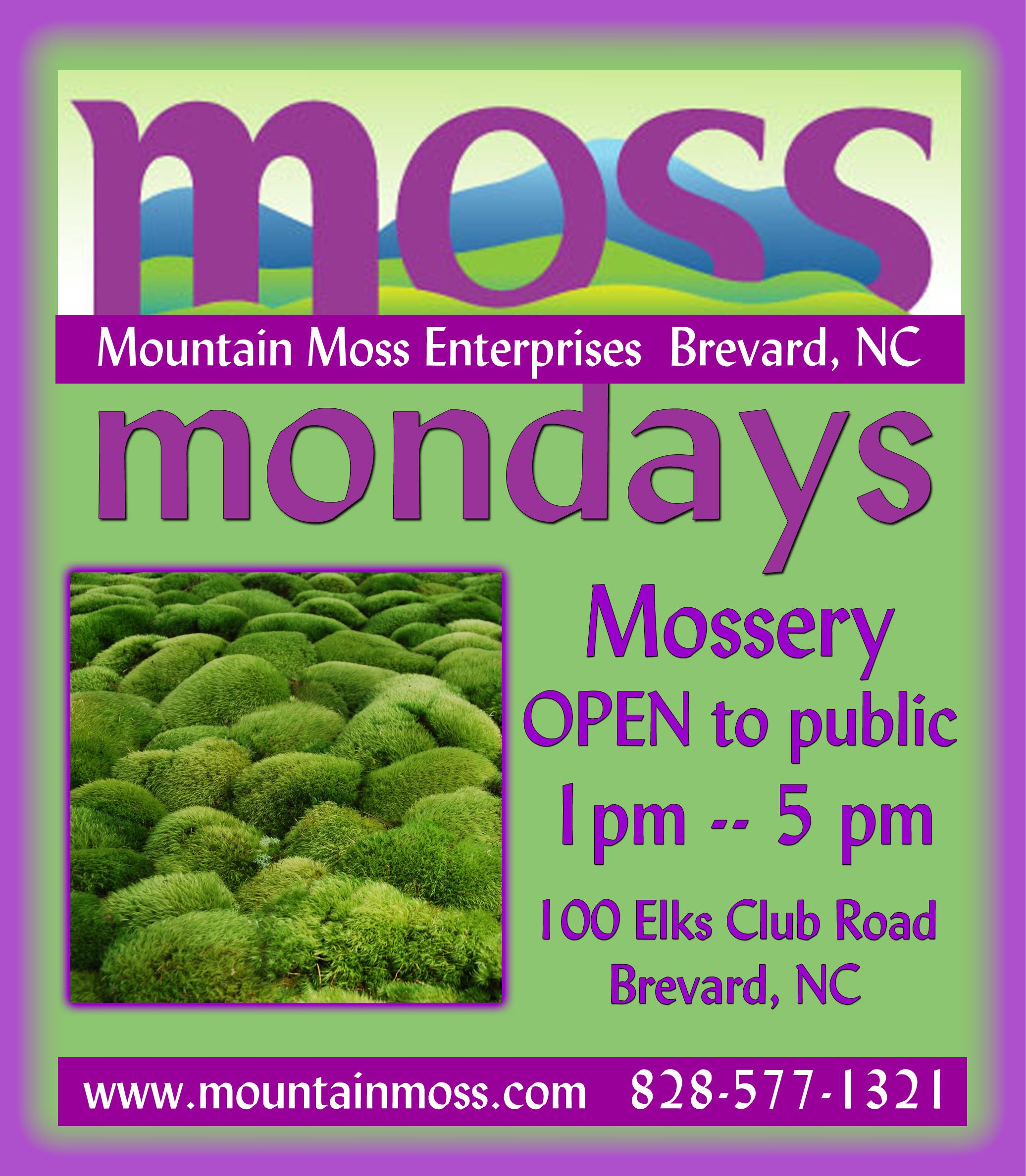Pin By Annie Martin On Moss