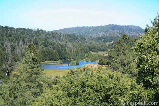 Upper French Valley in Cleveland National Forest | Southern ... on