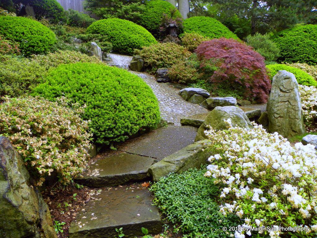 Look Up In The Japanese Garden Hillside Landscaping Landscape Design Landscaping With Rocks
