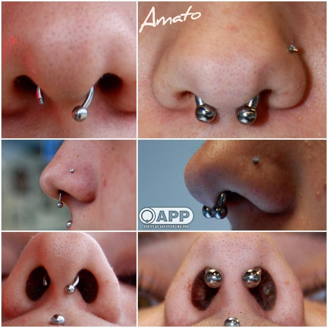 Second ear piercing ideas  An awesome septum correction by joe On the left is her original