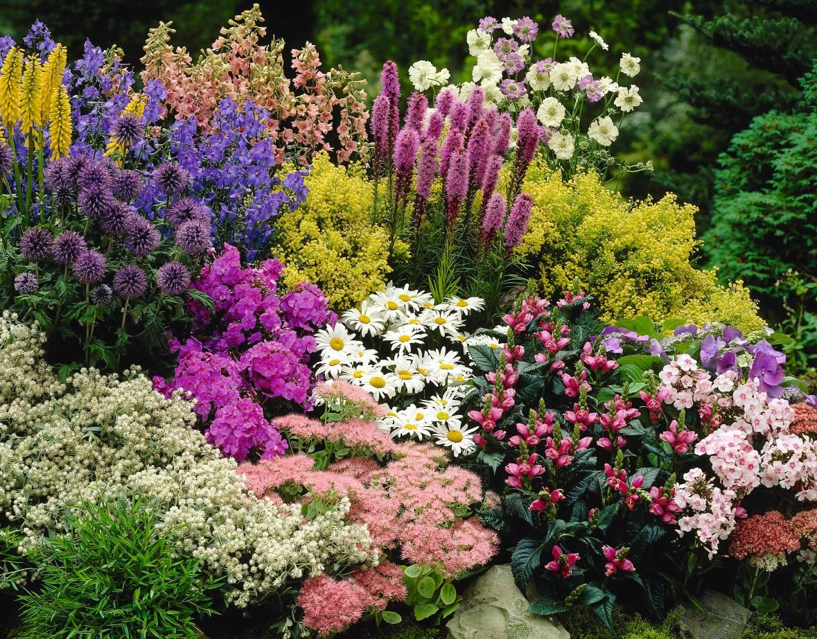Plants for flower beds - Best Option Would Be To Buy And Transplant Some Long Blooming Annuals Between The Perennials Inexpensive Landscapingperennial Gardensbed Ideas Flower