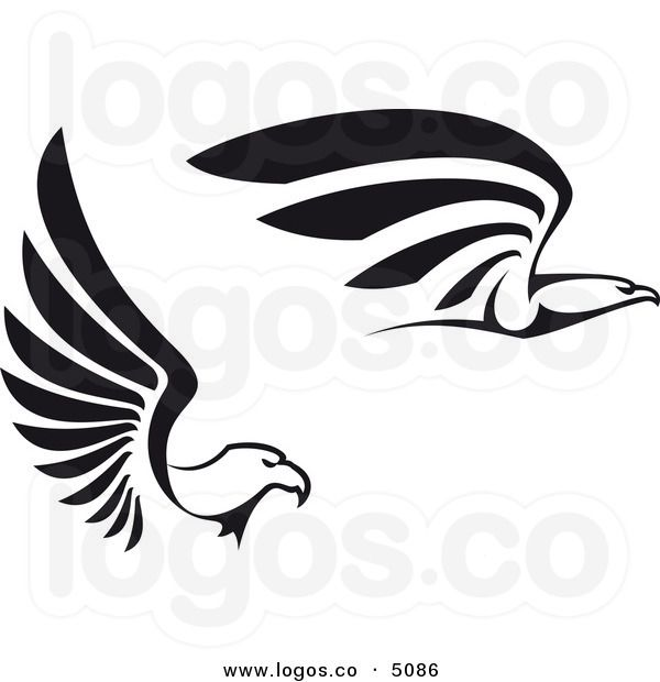 pix for u003e falcon logo clip art falcons birds of prey pinterest rh pinterest ca bald eagle logo pictures