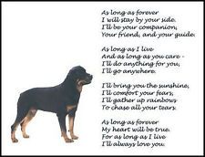 Beautiful Rottweiler Print As Long As Forever Verse Poem Dog