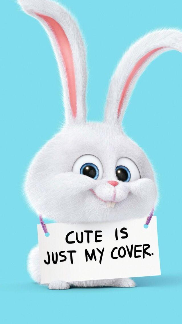 Snowball Cute Bunny Secret Life Of Pets Iphone Wallpaper Bunny Wallpaper Wallpaper Iphone Cute Rabbit Wallpaper