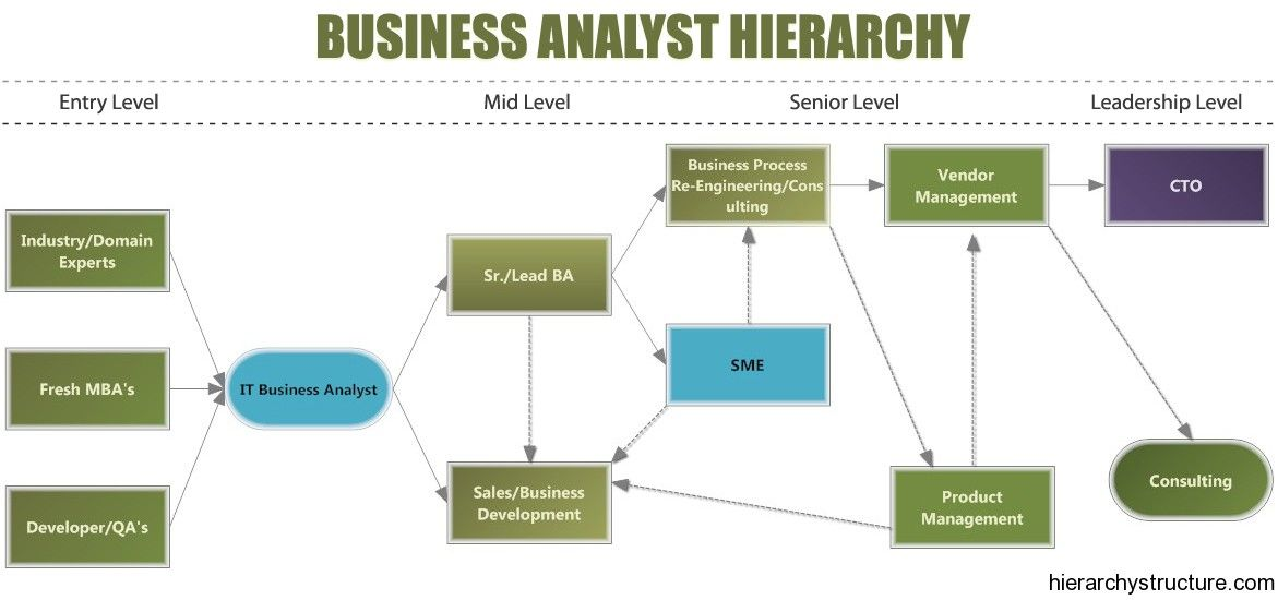 Business Analyst Hierarchy Business Analyst Business Analysis