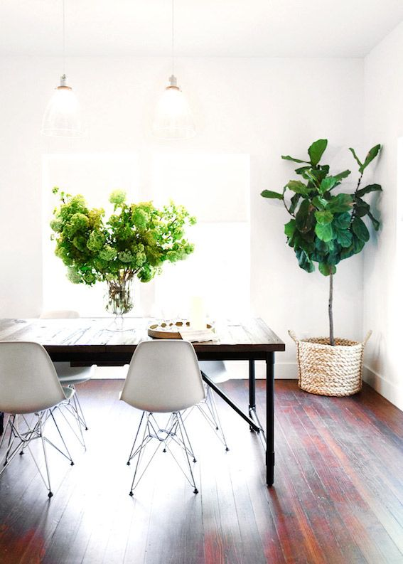 The fab light-filled studio of Camille Styles | Deco | Plants ...
