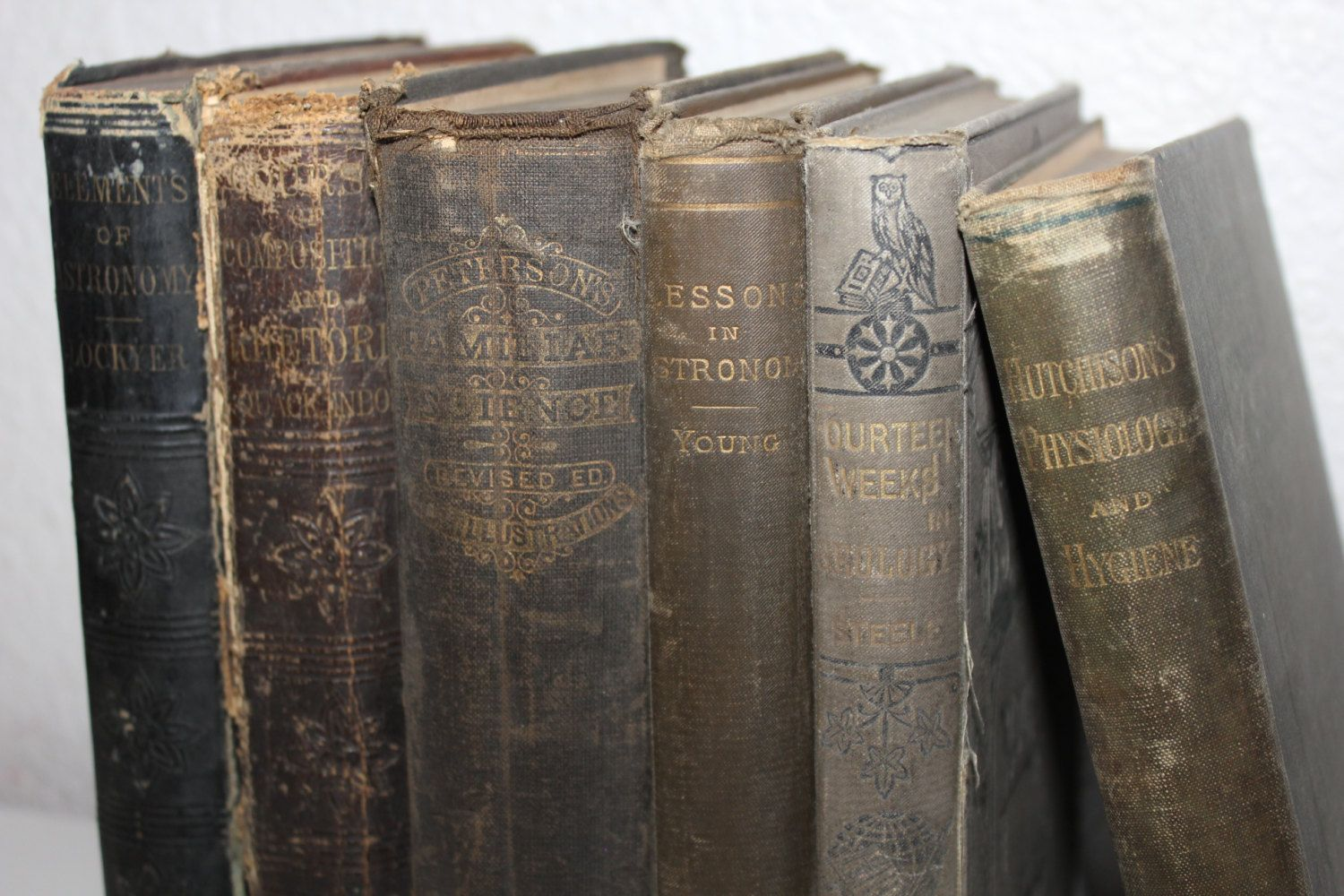 Shabby Chic Book Collection Vintage Books Antique Books Etsy Vintage Books Antique Books Library Decor