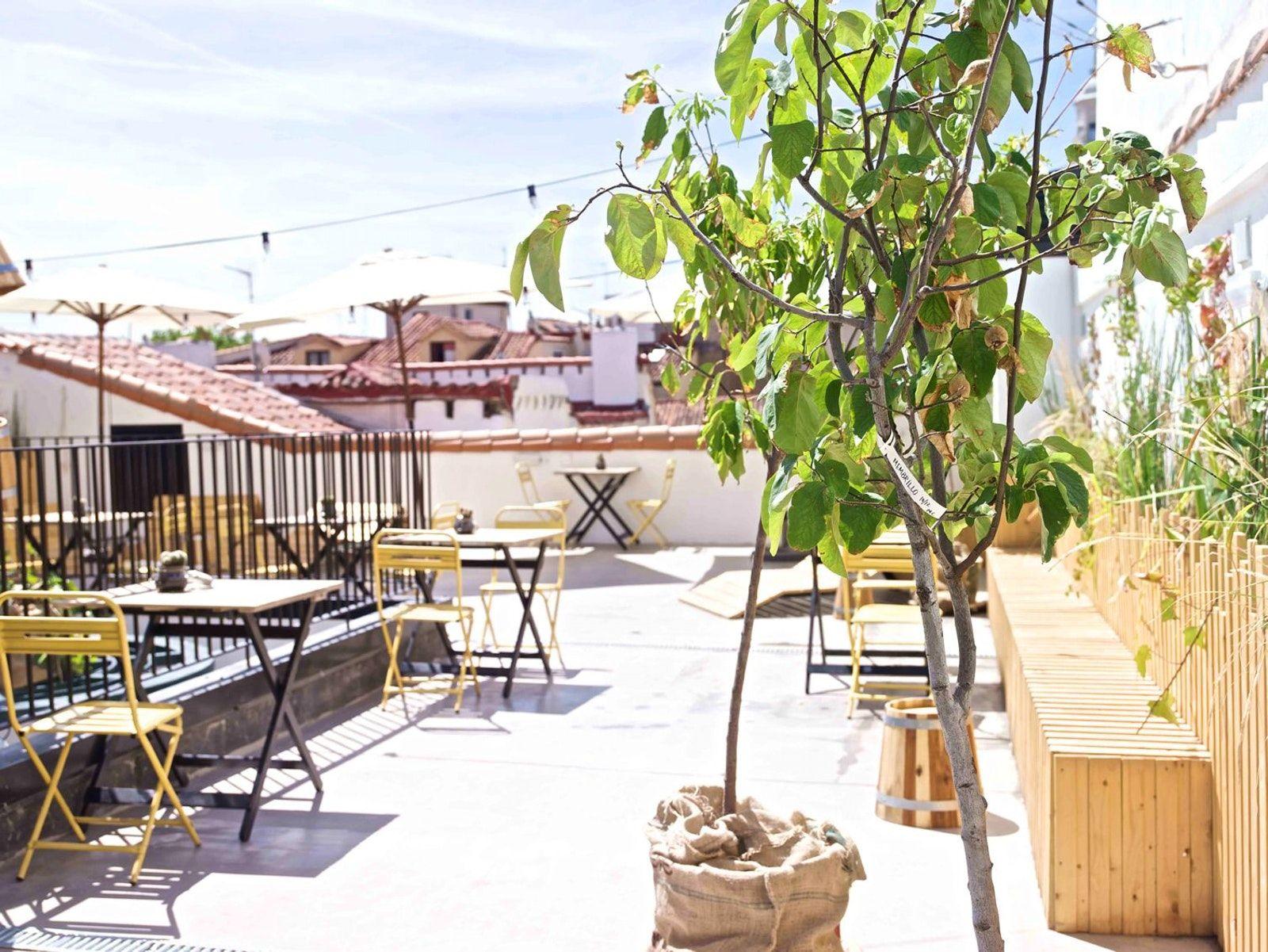 Visit The Hat Hostel Madrid Madrid Hotels Patio Best Rooftop Bars