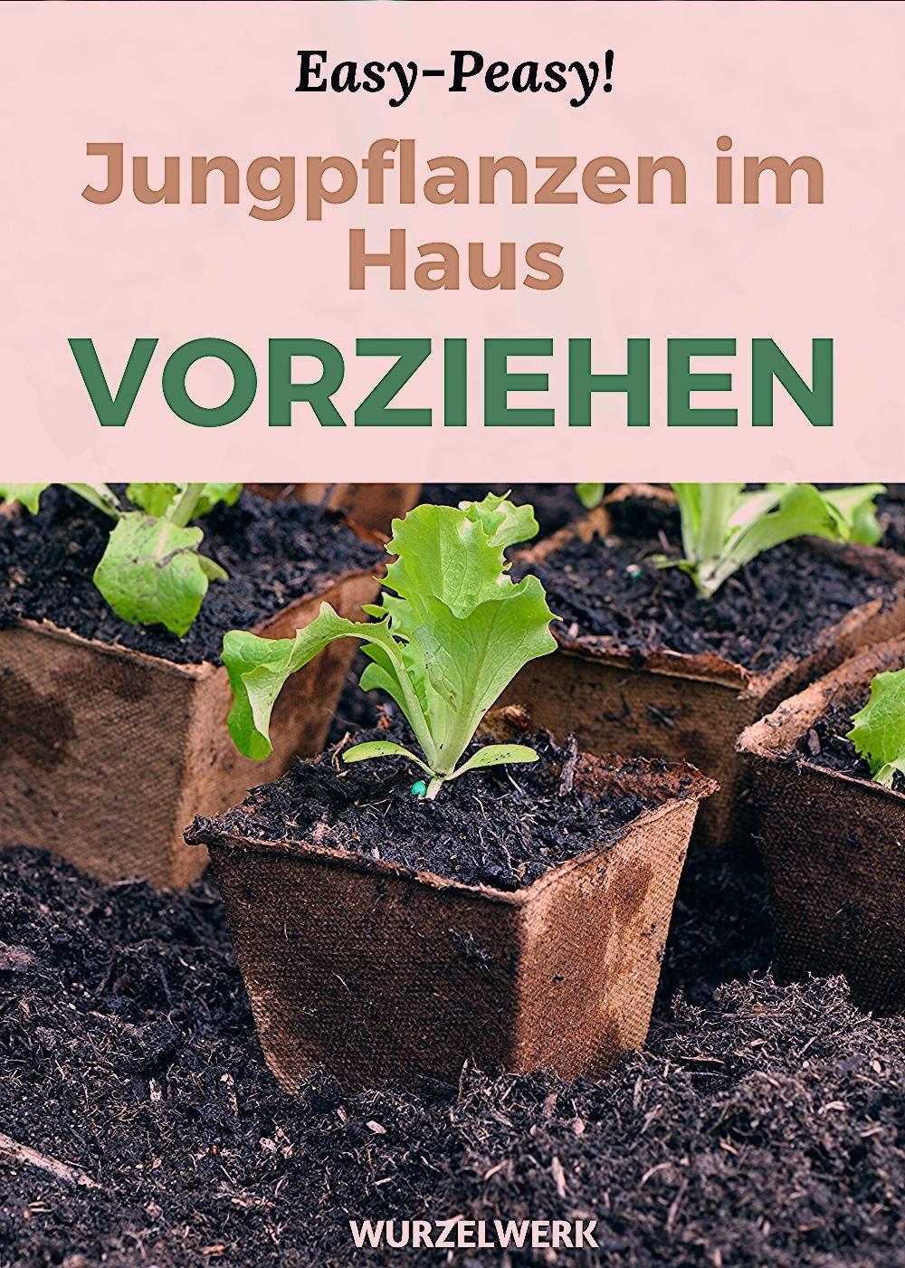 Photo of Jungpflanzen im Haus vorziehen