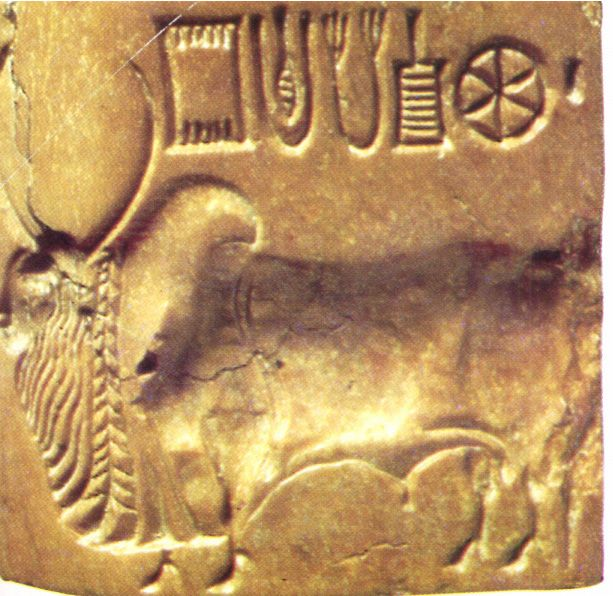 Indus valley seals writing a cover