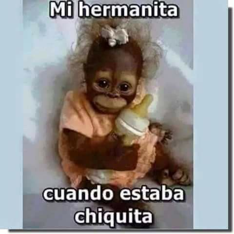 Mi Heemanita Cuando Estabaa Chiquita Memes Graciosos De Animales Frases Graciosas Para Hermanos Frases De Risa
