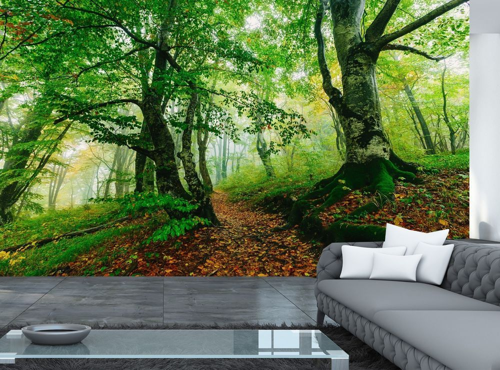 Colorful Forest Wall Mural Photo Wallpaper GIANT WALL