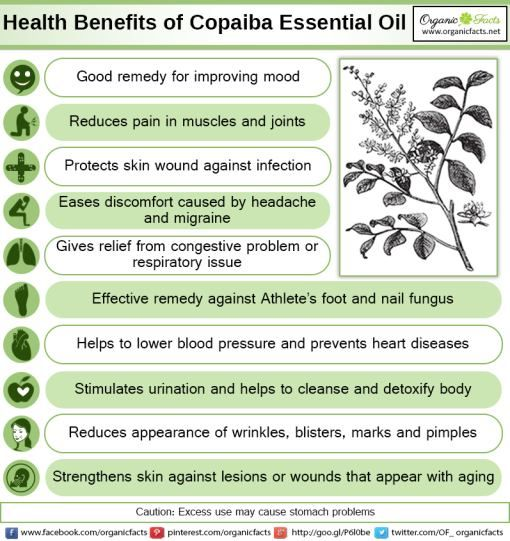 Some Of The Most Impressive Health Benefits Of Copaiba
