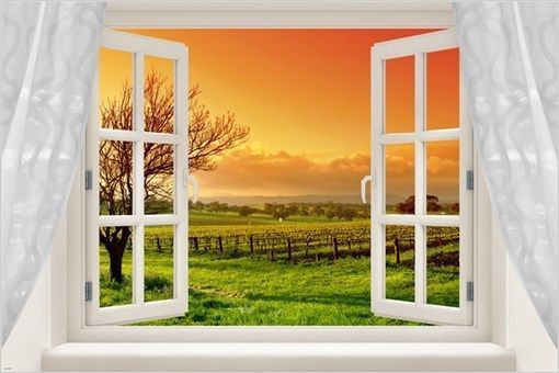 window poster FRENCH BORDEAUX REGION VINEYARDS picturesque COLORFUL 24X36