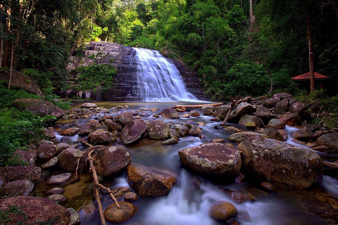 Queda de água Pedras Florestas Córrego Naturaleza