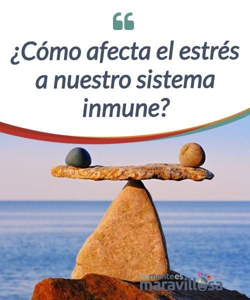 como afecta el estres a nuestro sistema inmune