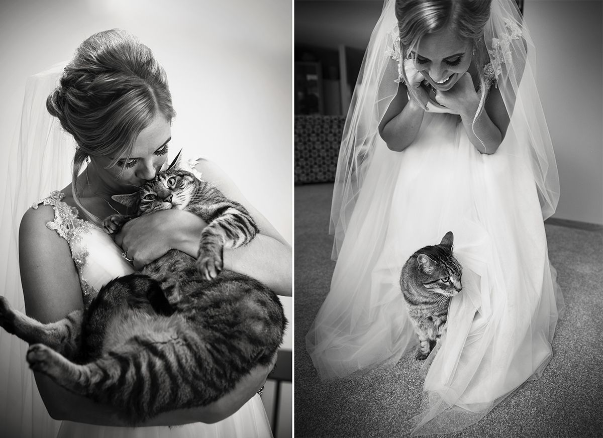 Super cute Bride with Cat photos. Getting ready photos