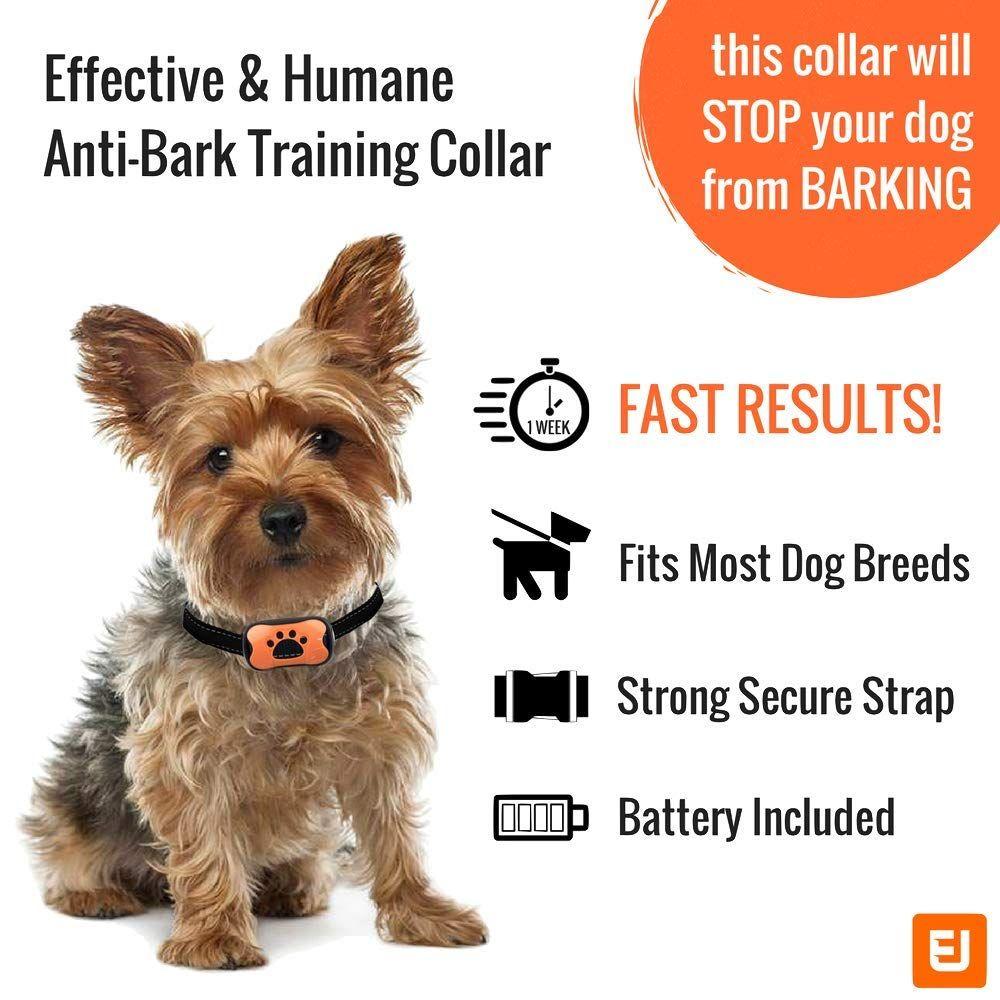 Dog Bark Collar Stop Dogs Barking Fast Safe Anti Barking