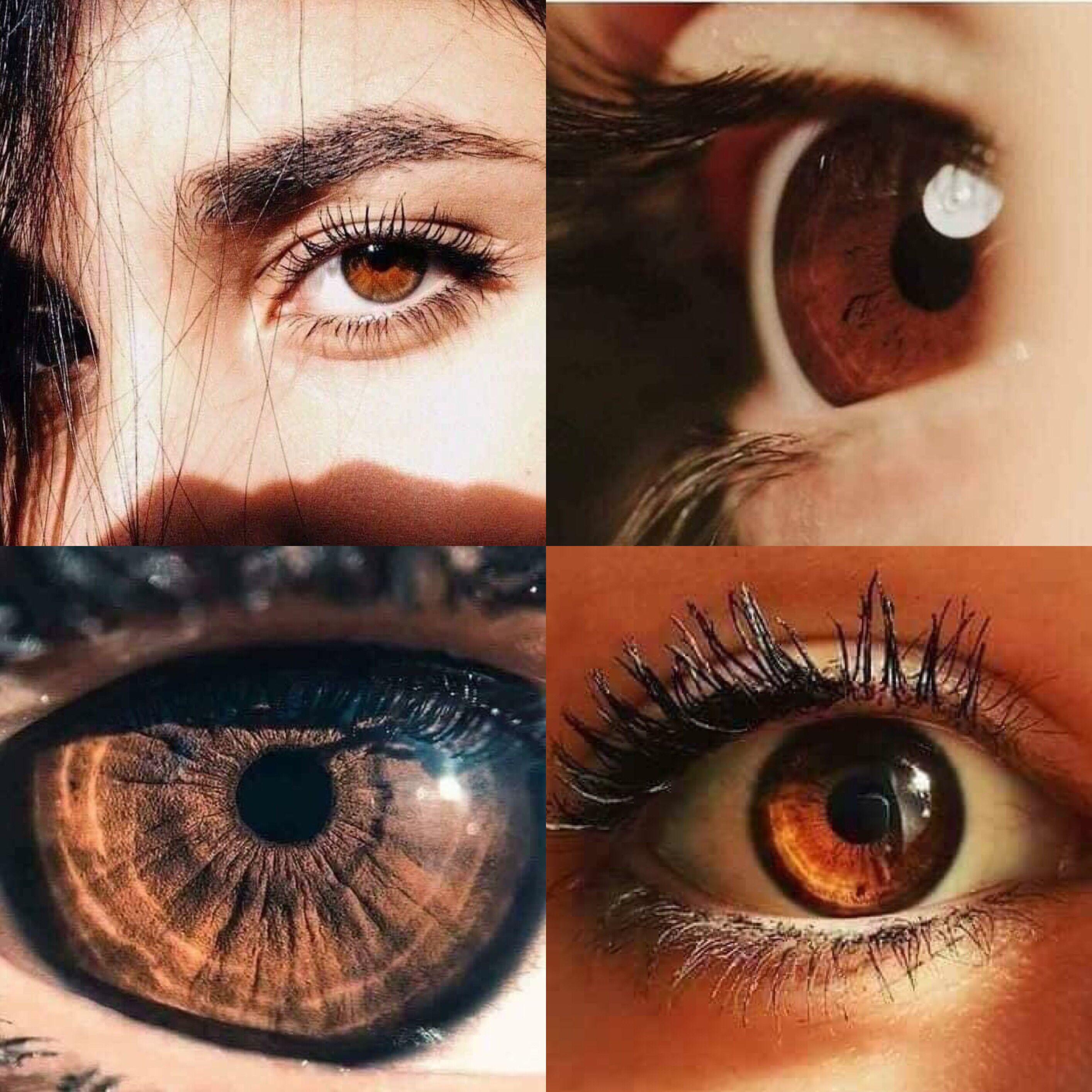أصحاب العيون الب نية ي صنفون جينيا كأكثر فئة اخلاصا وطيبة في تعاملاتهم مع الآخرين Henna Designs Photo Photography