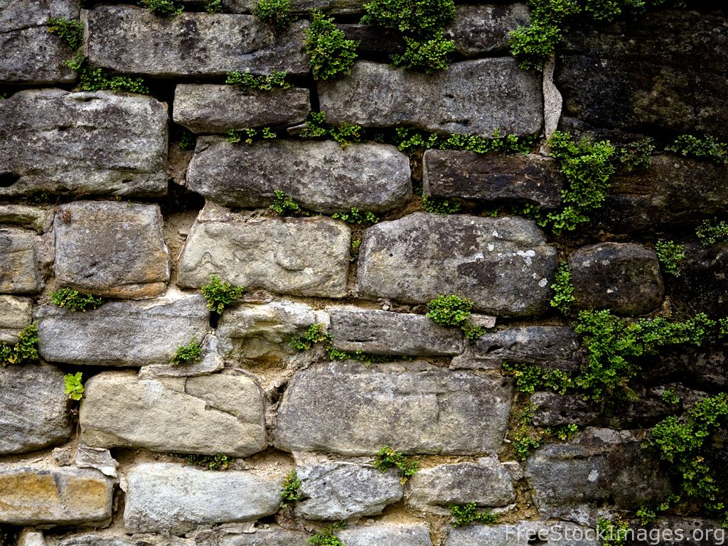 Free Stock Images Old Stone Wall Green Plants 19 Stone Wall Old Stone Dry Stone Wall