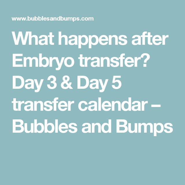 What happens after Embryo transfer? Day 3 & Day 5 transfer
