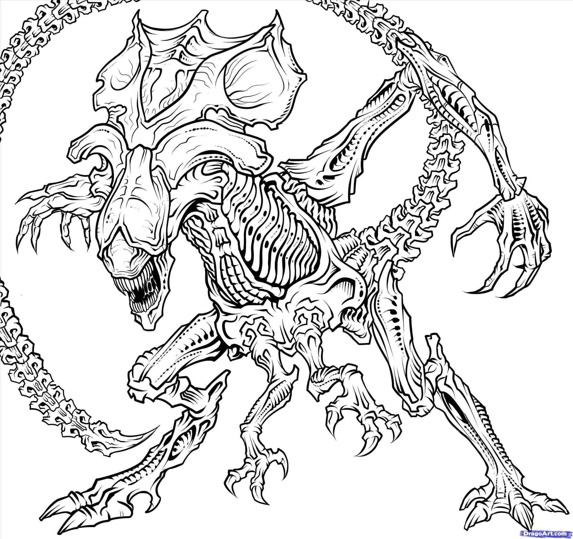38 Xenomorph Coloring Page Queen Drawing Predator Art Alien Vs Predator