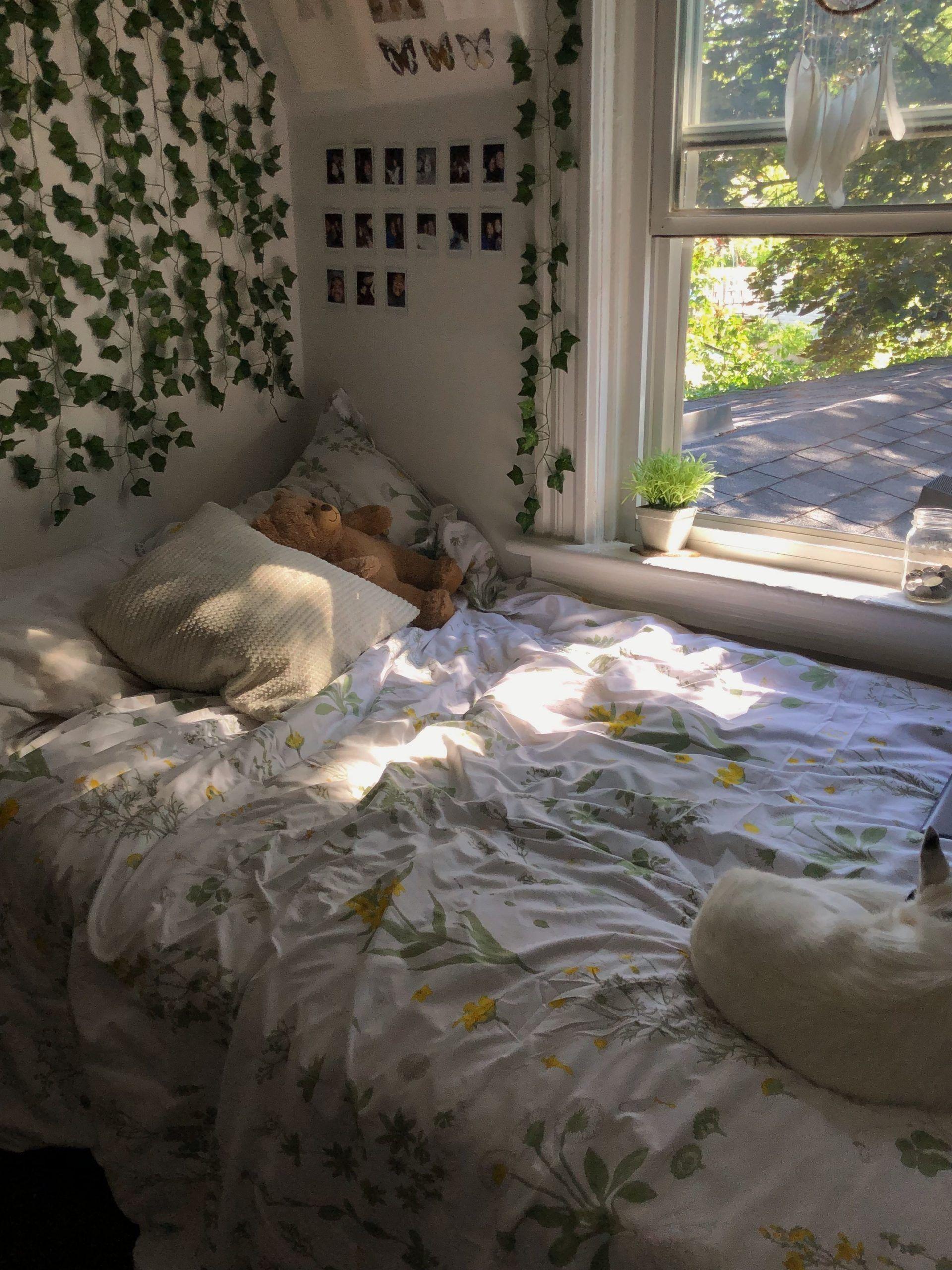 Photo of Vinez Blumenbeet ästhetische Schlafzimmer Pflanzen Reben an der Wand niedlichen Raum …