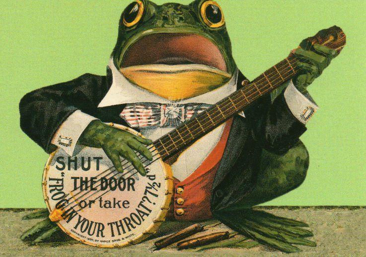 Banjo playing frog