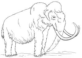 Resultado De Imagen De Animales Prehistoricos Para Colorear En