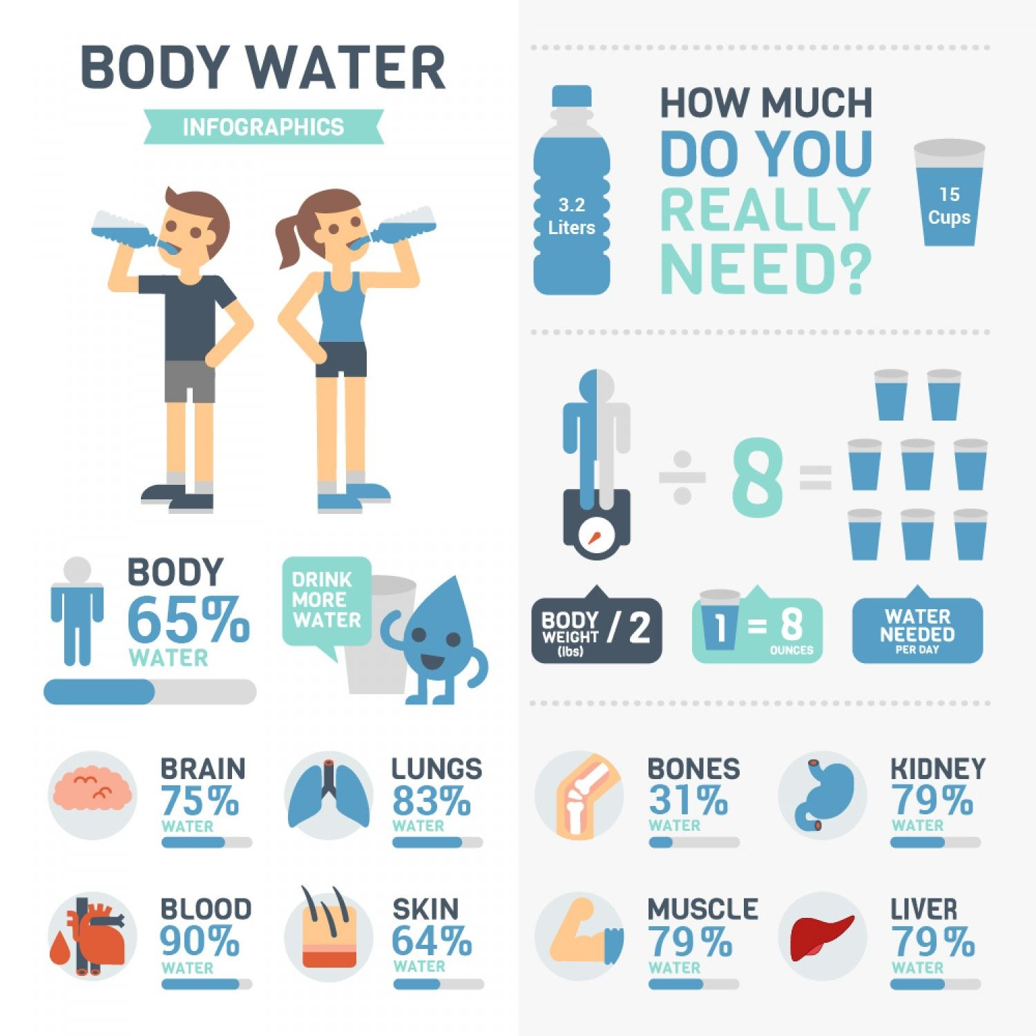 Amount of Water Present in our Body Infographic Benefits