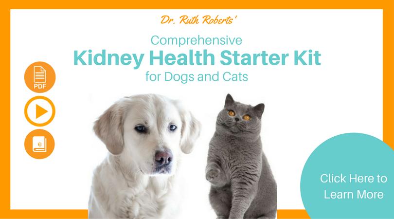 Kidney Health Starter Kit Kidney health, Health programs