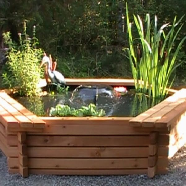 Build A Raised Pond: Different Then I've Seen But Ponds And All The Life Than