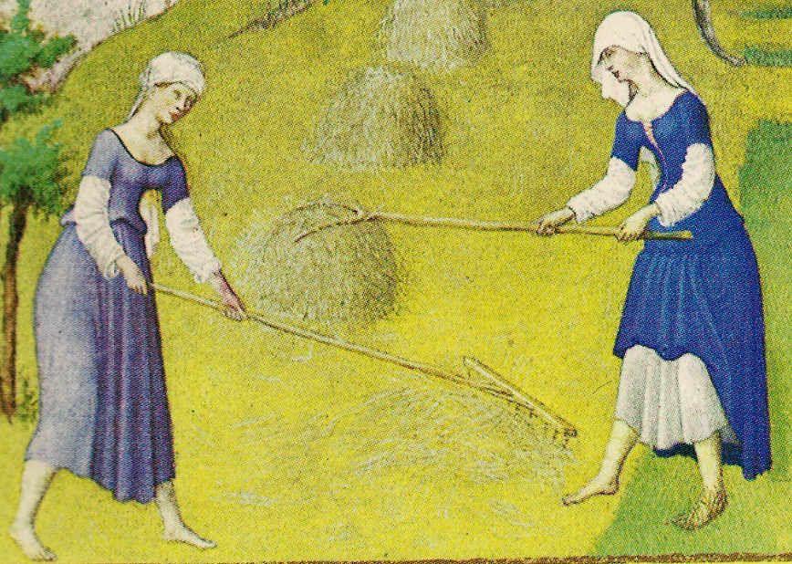 women_basic2.jpg (868×618)