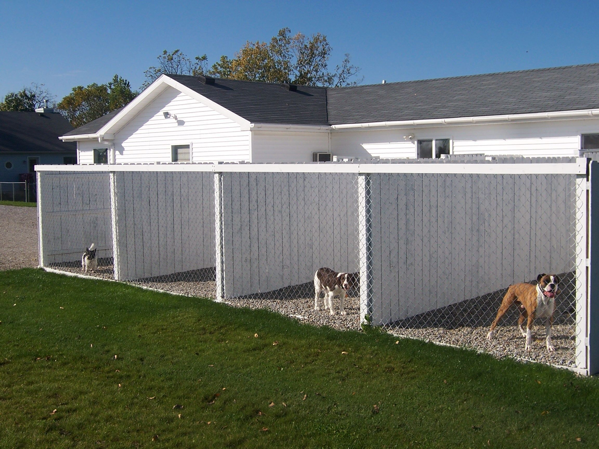 Dog Runs Then Connected To Land Where They Have Room To Run And Play Dogrun Dog Boarding Kennels Dog Kennel Designs Dog Kennel Flooring
